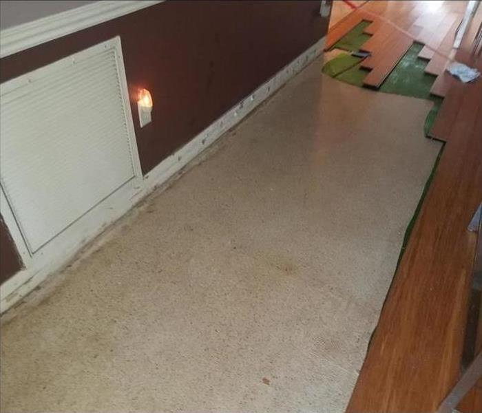 Water Damage on Carpet within a Wilton Manors Yacht