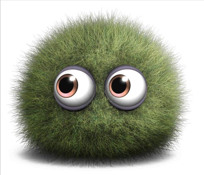cute fuzzy green mold cartoon with big eyes