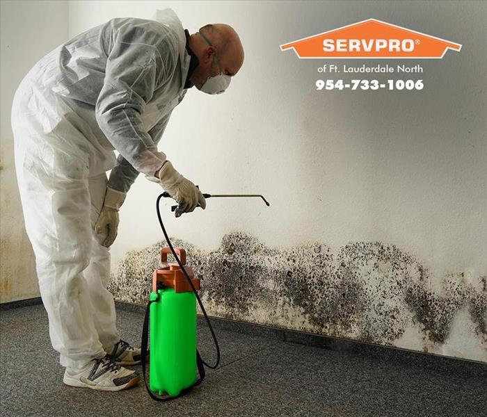 Man spraying mold treatment on damaged wall.