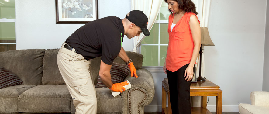 Fort Lauderdale, FL carpet upholstery cleaning