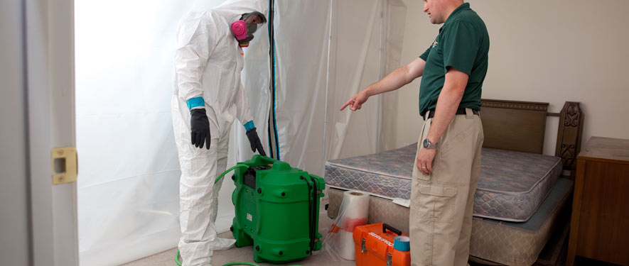 Fort Lauderdale, FL mold removal process